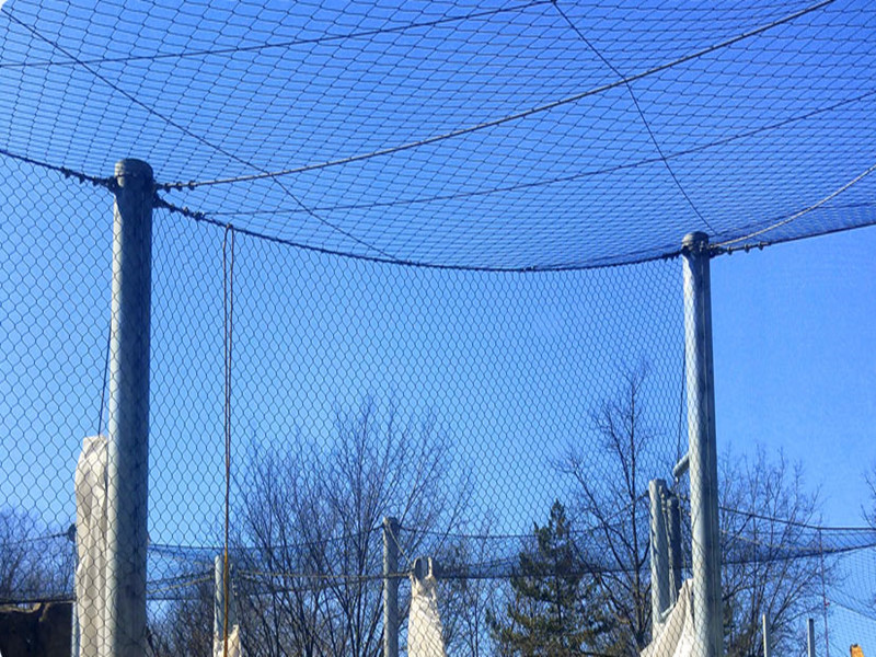 Bird park wire rope aviary netting