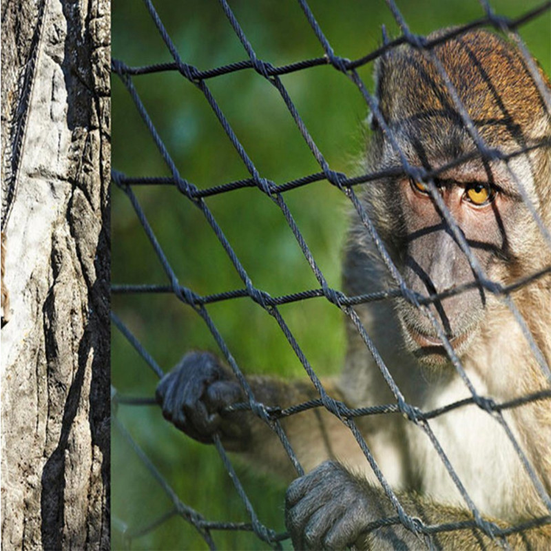 Stainless steel rope net used for monkey enclosure mesh