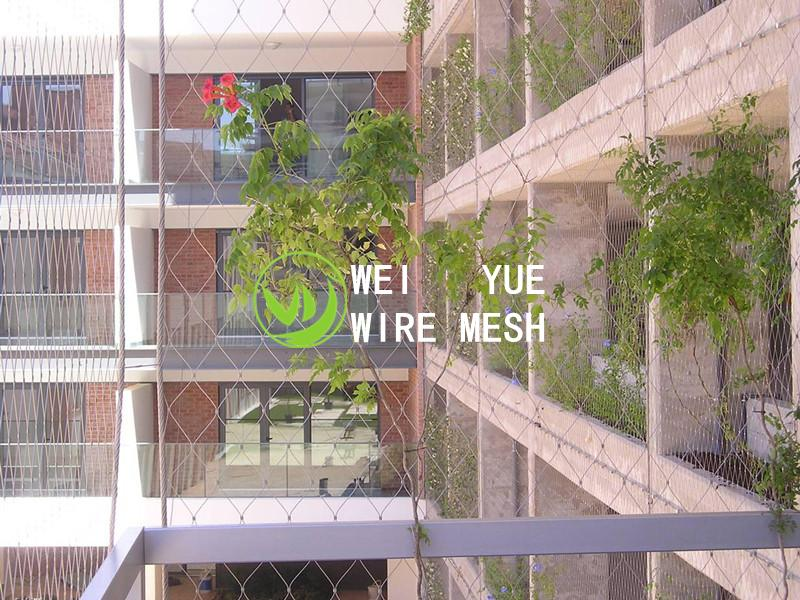 Stainless steel rope net green wall